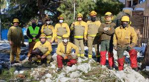 Brigada Forestal Madrid